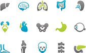 Stampico icons - Anatomy