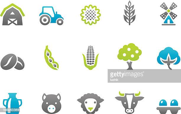 stampico icons - farm - corn crop stock illustrations, clip art, cartoons, & icons