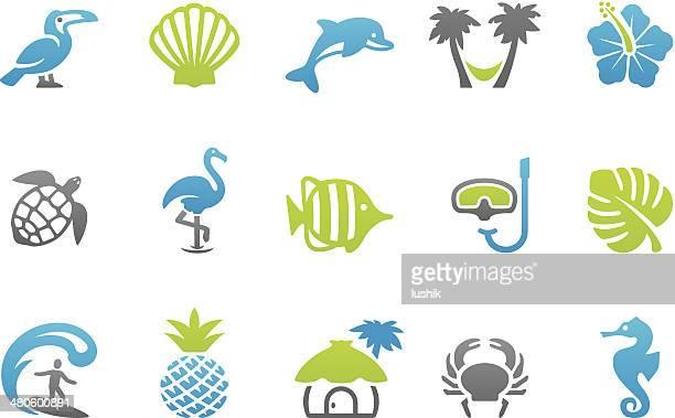 stampico icons - tropical - flamingo stock illustrations, clip art, cartoons, & icons