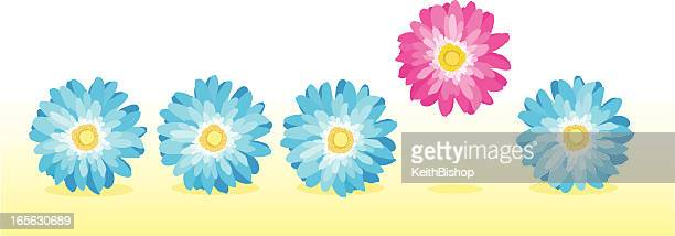 stand out success daisy flower - gerbera daisy stock illustrations, clip art, cartoons, & icons