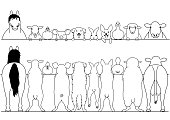 standing farm animals front and back border set