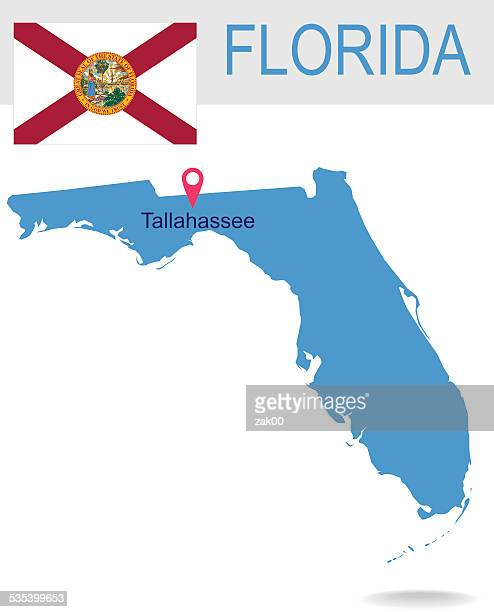 usa state of florida's map and flag - international border stock illustrations, clip art, cartoons, & icons