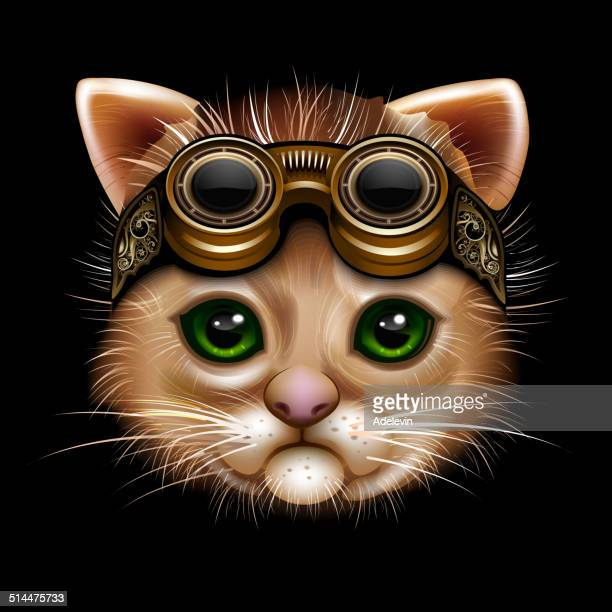illustrations, cliparts, dessins animés et icônes de steampunk tête de chat - chat humour