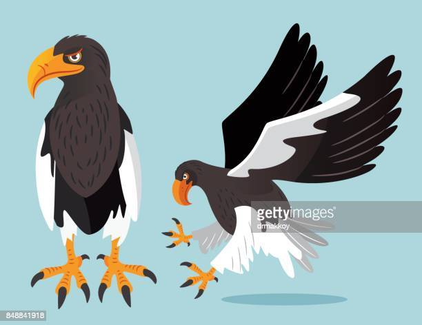 steller's sea eagle - hokkaido stock illustrations, clip art, cartoons, & icons