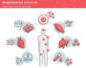 Stem Cell Infographics