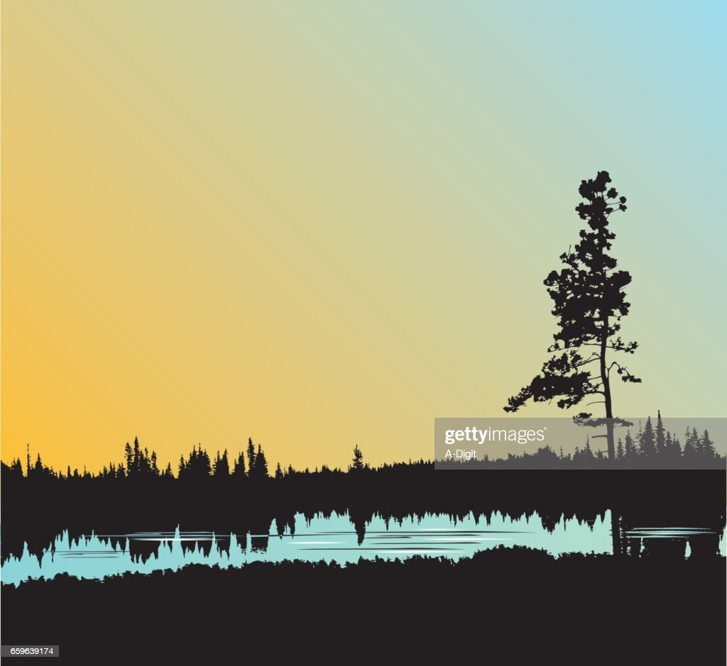 Still Water Forest : stock illustration