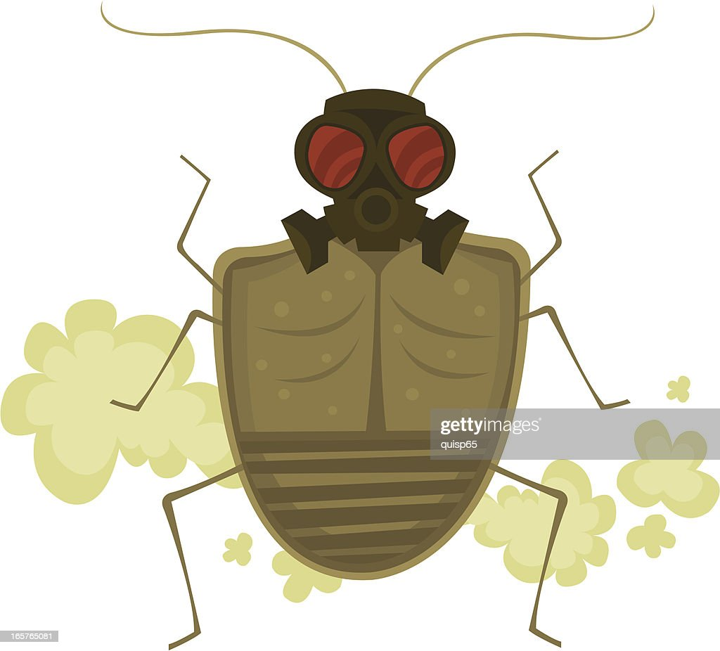Stink Bug : stock illustration