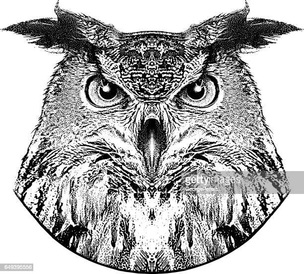 stipple portrait of a great horned owl - great horned owl stock illustrations