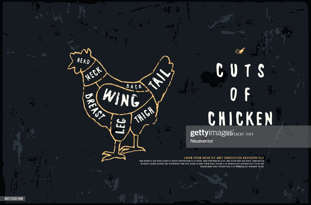 Stock vector chicken cuts diagram in the style of handmade graphics