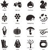 Stock Vector Illustration: Autumn icons