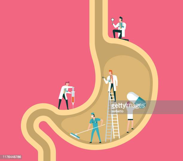 stomach - digestive system stock illustrations