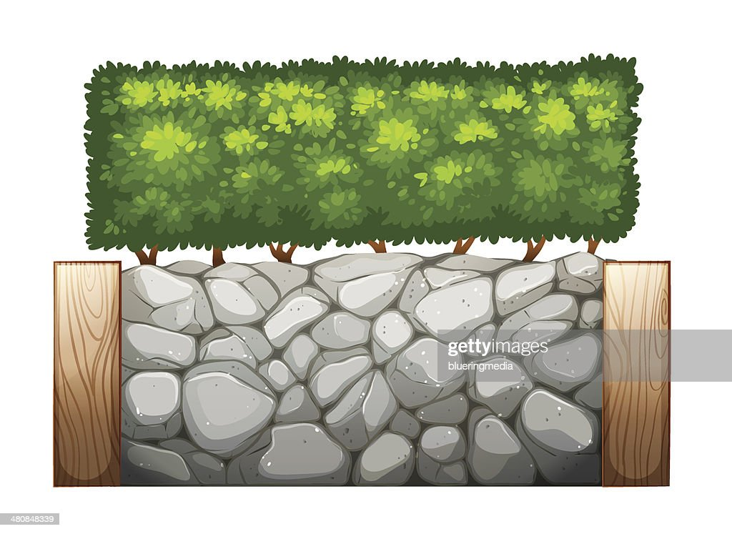 Stonewall with plants