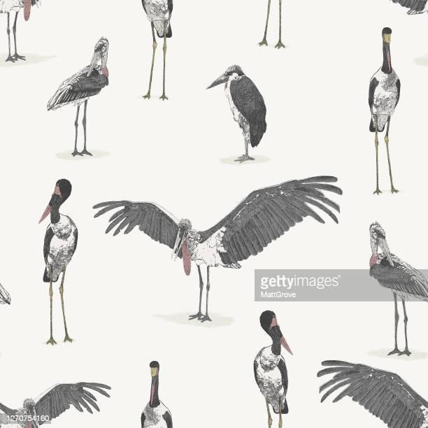 illustrations, cliparts, dessins animés et icônes de stork birds modèle de répétition sans couture - marabout