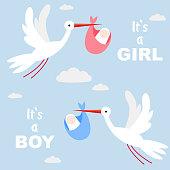 Stork carrying a cute baby. It's boy! It's girl!