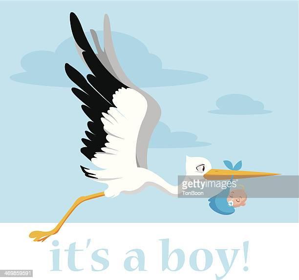 stork delivering a baby boy - childbirth stock illustrations