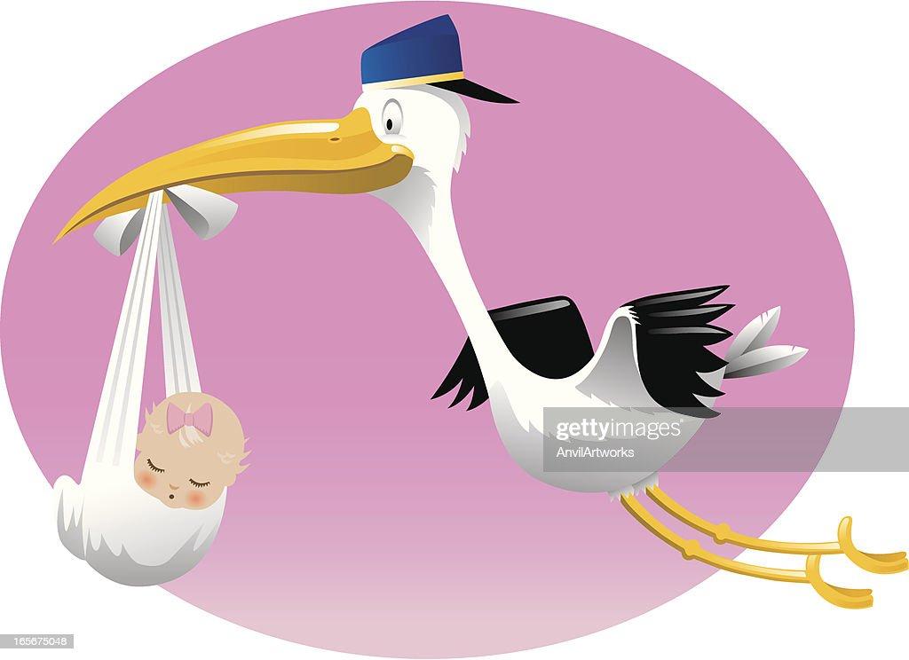 Stork Delivers Baby Girl : stock vector