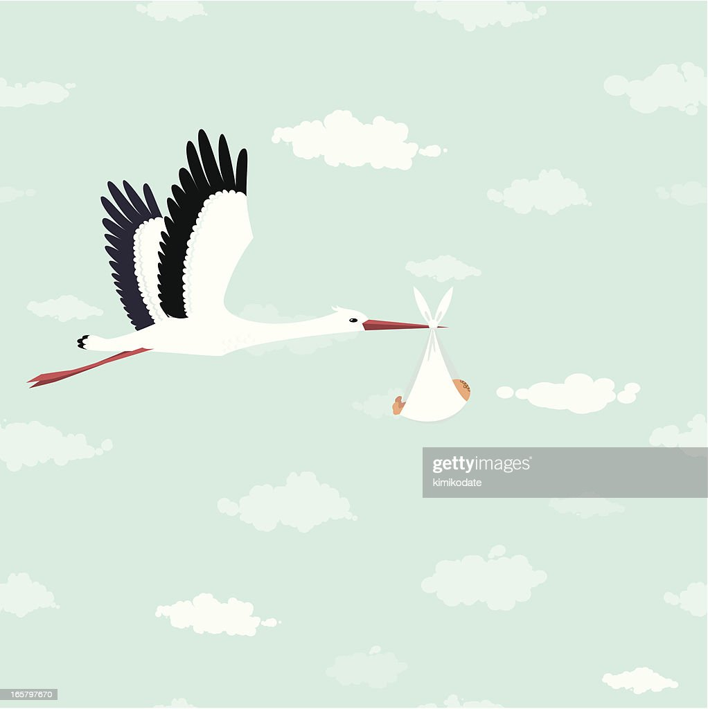 Stork delivery : stock illustration
