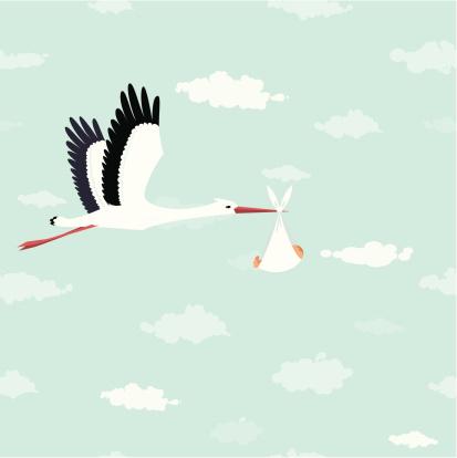 Stork delivery - gettyimageskorea