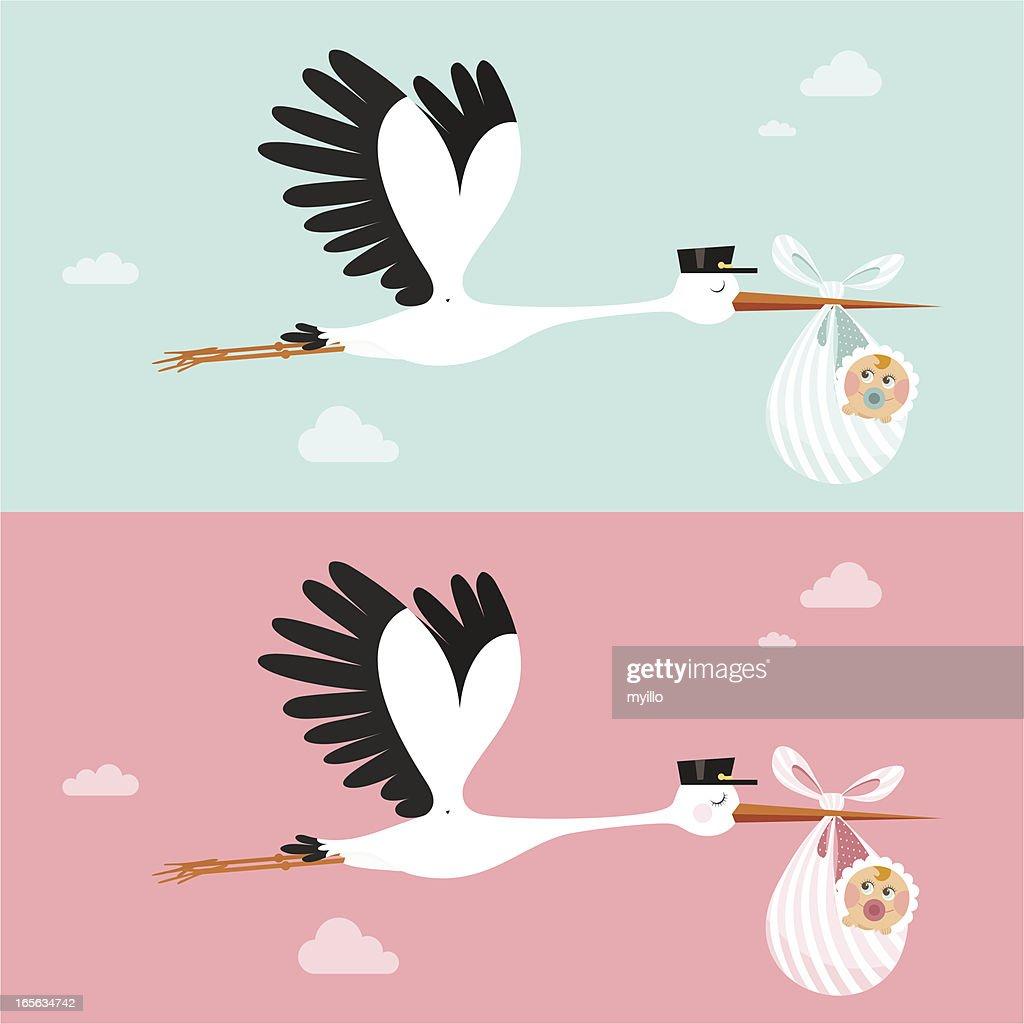 Stork : stock illustration