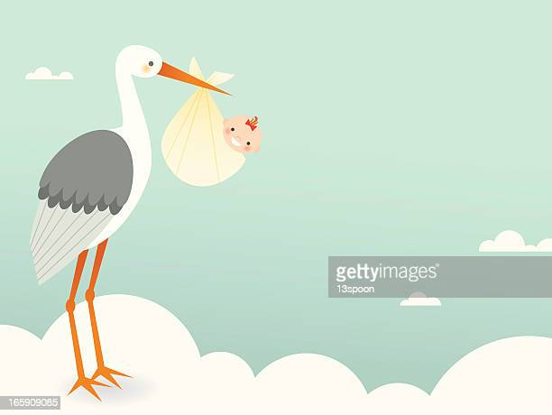 Stork's Bundle of Joy