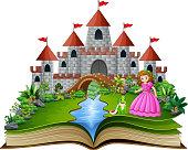 Story book of princess and frog prince cartoon