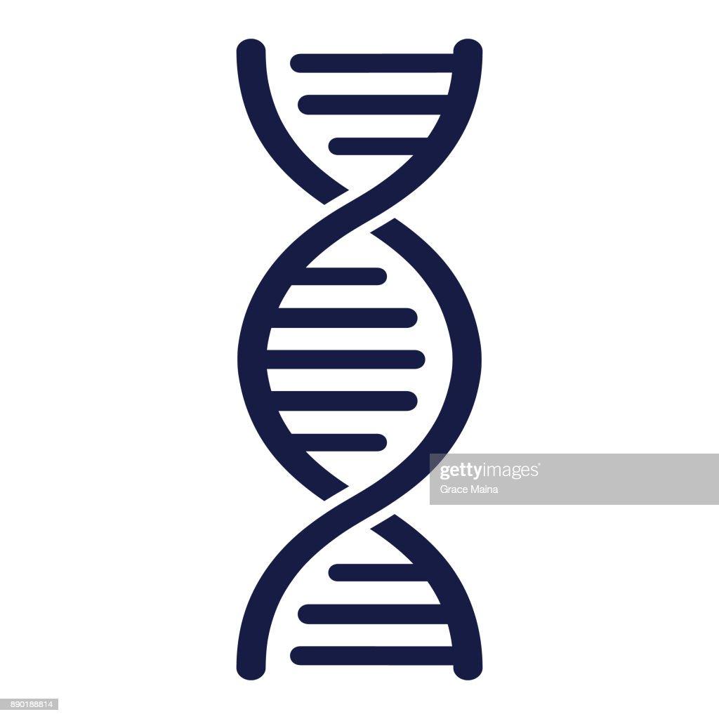 DNA Strand - Vector : stock illustration