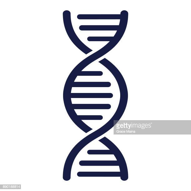 dna strand - vector - dna stock illustrations