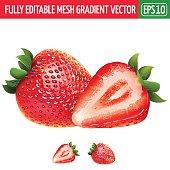 Strawberry on white background. Vector illustration