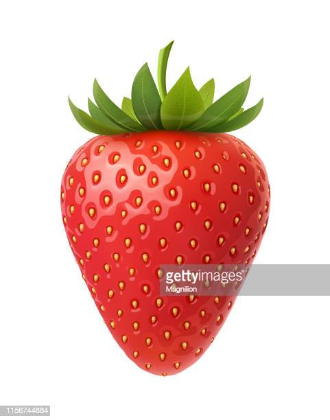 strawberry vector illustration - strawberry stock illustrations