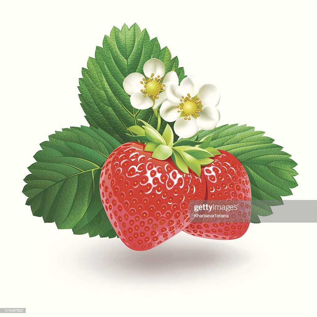 Strawberry with leaves and flowers.