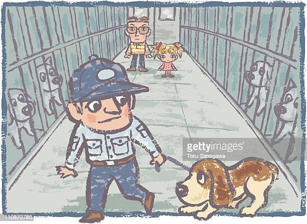 Stray dog asylum