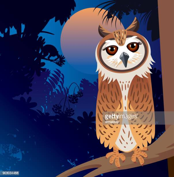 Striped Owl and forest
