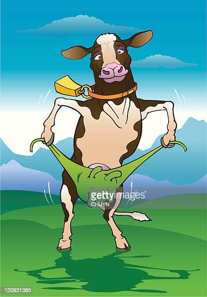 Stripper Cow