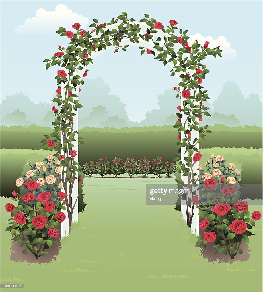 A stunning illustration of a rose garden