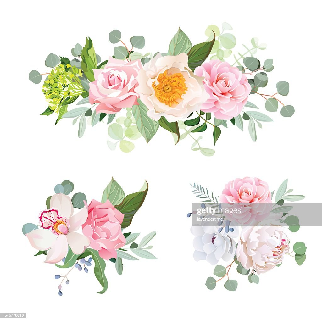 Stylish various flowers bouquets vector design set