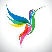 Stylized Colorful Hummingbird