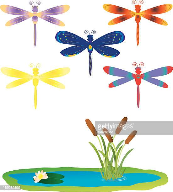 stylized dragonflies - odonata stock illustrations, clip art, cartoons, & icons