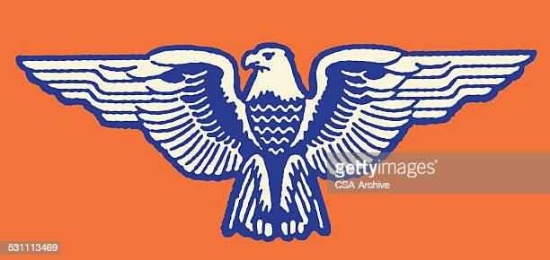 illustrations, cliparts, dessins animés et icônes de stylisé aigle - aigle