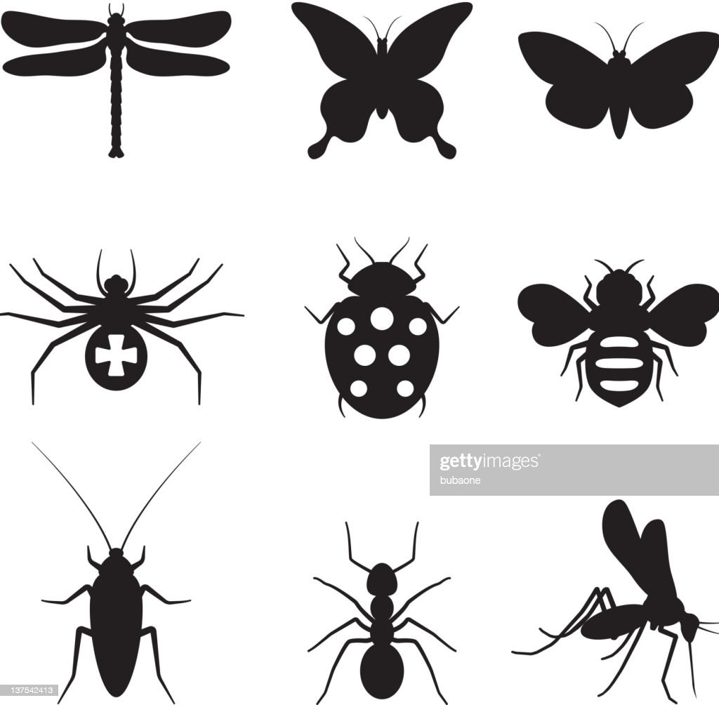 Stylized insects black and white royalty free vector icon set : stock illustration