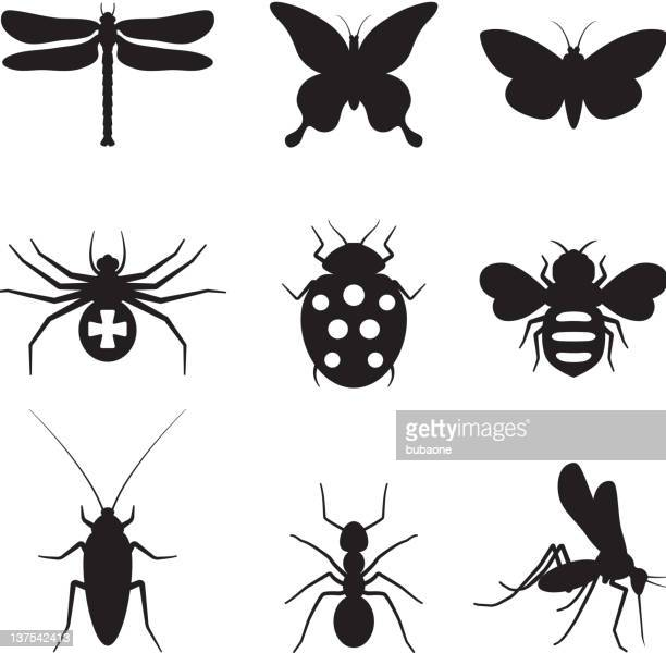 stylized insects black and white royalty free vector icon set - queen bee stock illustrations