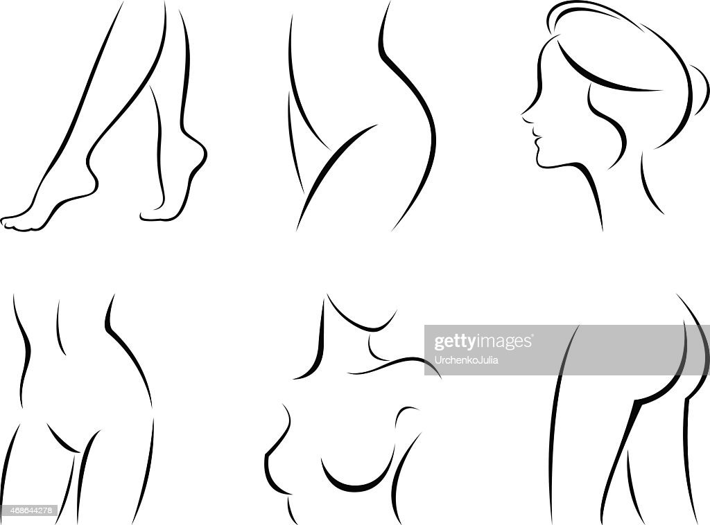 Stylized Line Drawings Of Female Body Parts Vector Art Getty Images