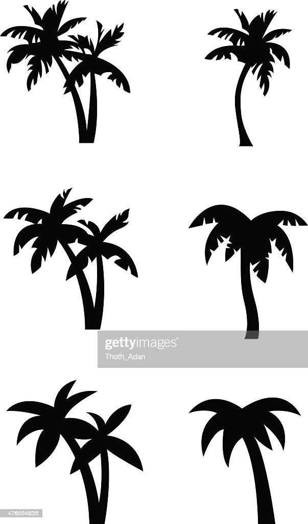 Stylized palm tree silhouettes : stock illustration
