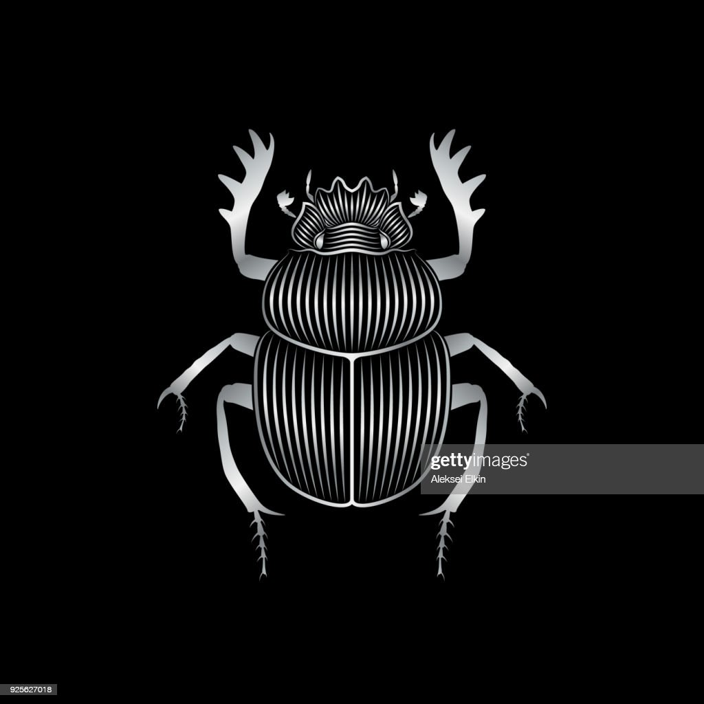 Stylized silver scarab on black background