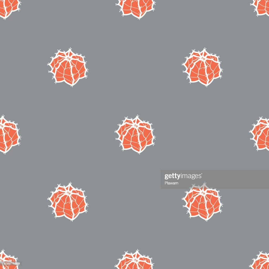 Succulent in white outline and red plane on gray background. Seamless pattern vector illustration.