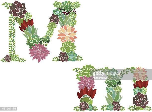 succulent letter m and m - letter m stock illustrations, clip art, cartoons, & icons