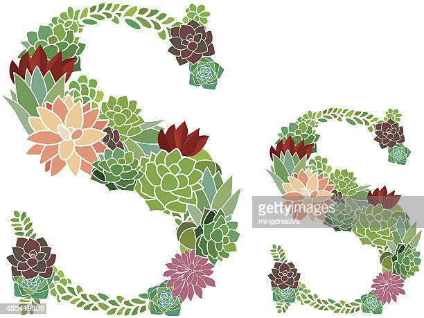 succulent letter s and s - letter s stock illustrations, clip art, cartoons, & icons