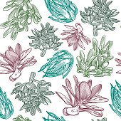 Succulent Pattern