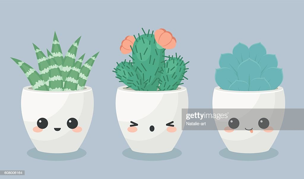 Succulents in kawaii faces flower pots
