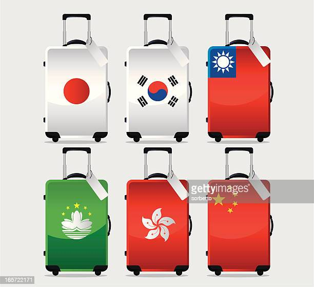 Suitcase National Flag Collection
