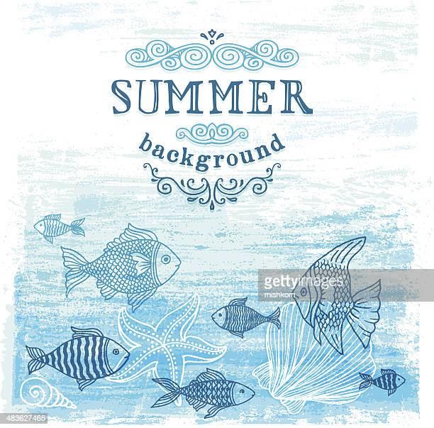 ilustraciones, imágenes clip art, dibujos animados e iconos de stock de fondo de verano - concha de mar